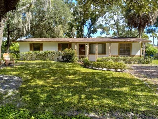 6115 N Falkenburg Road, Tampa, FL 33610 (MLS #T3336779) :: Medway Realty