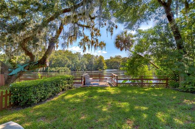 1506 E Park Circle, Tampa, FL 33610 (MLS #T3336858) :: Prestige Home Realty