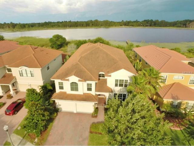 2699 Lakebreeze Lane S, Clearwater, FL 33759 (MLS #U7736888) :: Burwell Real Estate