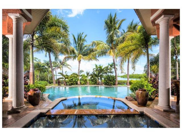 1427 Oceanview Drive, Tierra Verde, FL 33715 (MLS #U7745706) :: The Signature Homes of Campbell-Plummer & Merritt