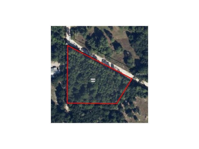 5630 E Turkey Trail Drive, Hernando, FL 34442 (MLS #U7750908) :: The Duncan Duo Team