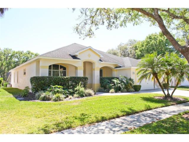 16843 Harrierridge Place, Lithia, FL 33547 (MLS #U7812019) :: The Duncan Duo & Associates