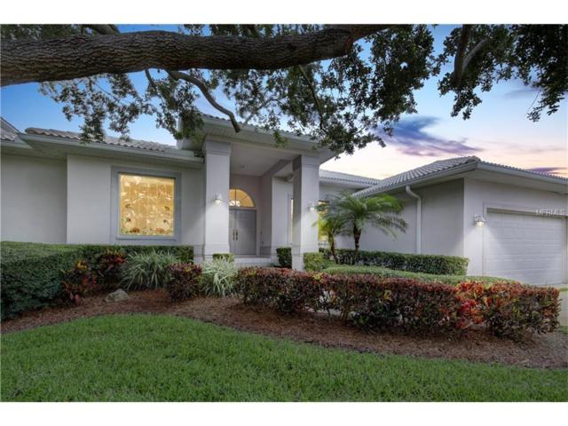 627 7TH Avenue N, Tierra Verde, FL 33715 (MLS #U7823230) :: Baird Realty Group