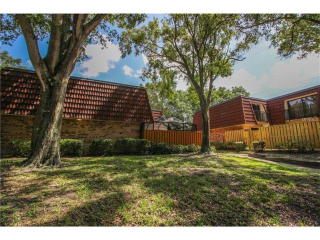 2705 4TH Court, Palm Harbor, FL 34684 (MLS #U7827435) :: Delgado Home Team at Keller Williams