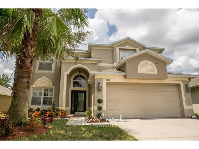 3207 Dunstable Drive, Land O Lakes, FL 34638 (MLS #U7829797) :: Griffin Group