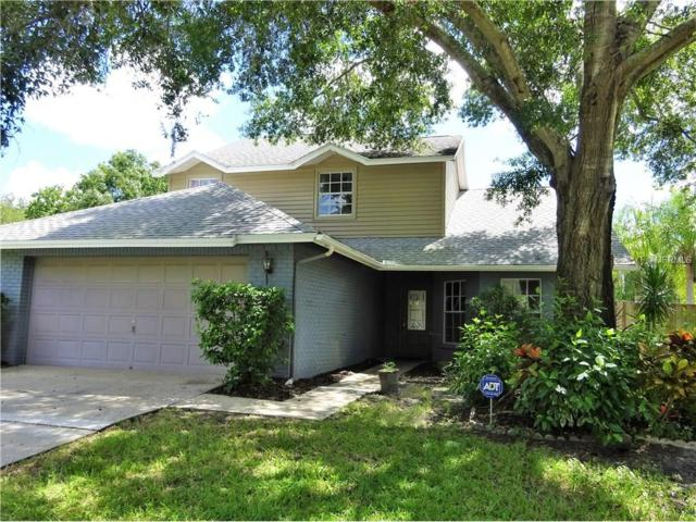 8769 Hampden Drive, Tampa, FL 33626 (MLS #U7829865) :: Griffin Group