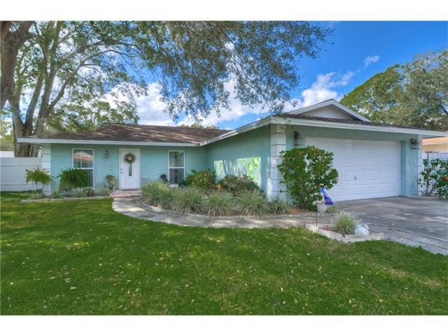 17725 Rivendel Road, Lutz, FL 33549 (MLS #U7832974) :: Delgado Home Team at Keller Williams