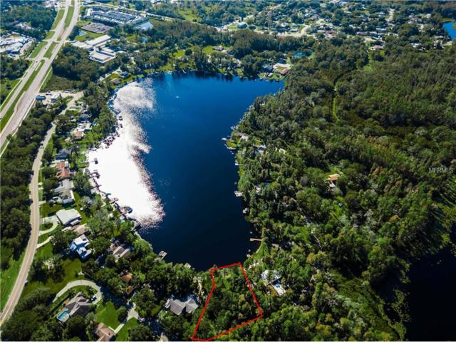 19210 Lake Allen Road, Lutz, FL 33558 (MLS #U7837294) :: Mark and Joni Coulter | Better Homes and Gardens