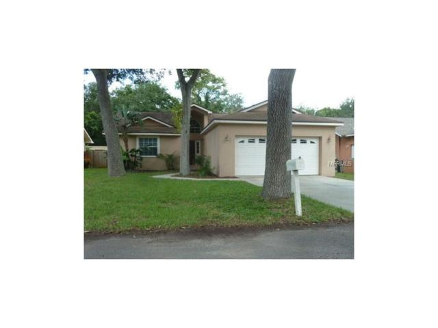 11520 Murray Avenue, Largo, FL 33778 (MLS #U7837817) :: Dalton Wade Real Estate Group