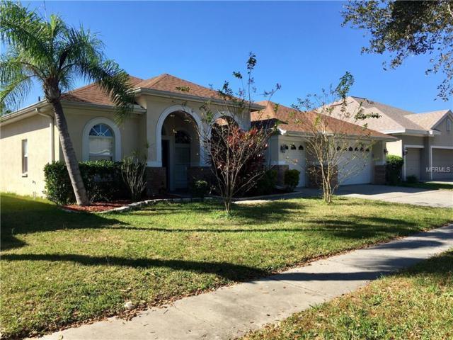 10510 Rochester Way, Tampa, FL 33626 (MLS #U7838890) :: Cartwright Realty