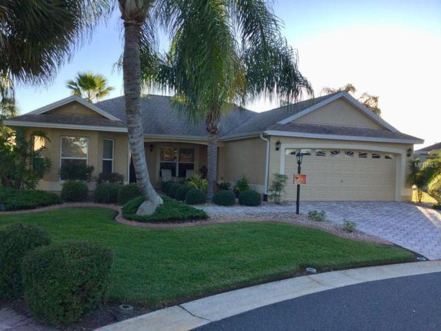650 Bainan Place, The Villages, FL 32162 (MLS #U7839091) :: Realty Executives in The Villages