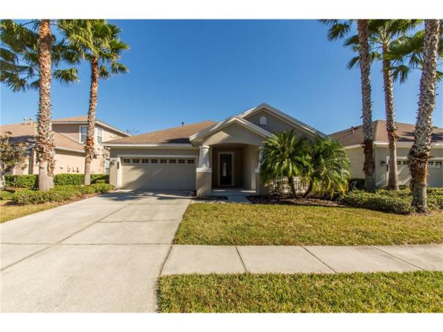 20111 Heritage Point Drive, Tampa, FL 33647 (MLS #U7840149) :: Team Bohannon Keller Williams, Tampa Properties