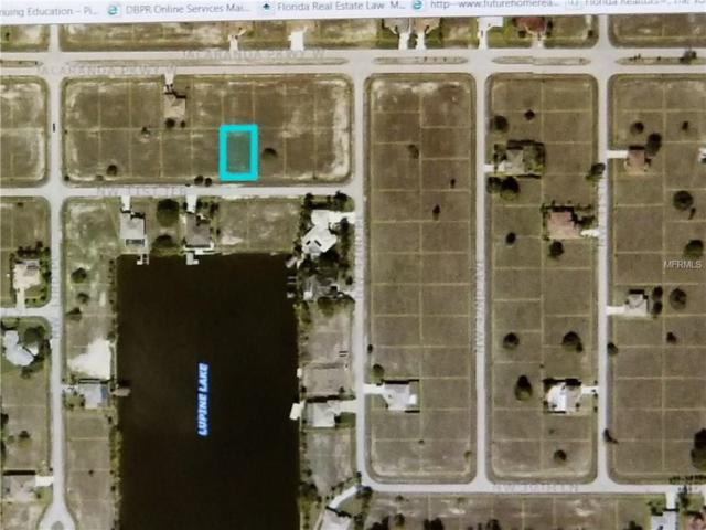 4229 NW 31ST Terrace, Cape Coral, FL 33993 (MLS #U7840470) :: Griffin Group