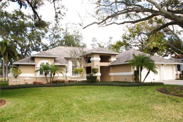 210 Coe Road, Belleair, FL 33756 (MLS #U7844177) :: Burwell Real Estate