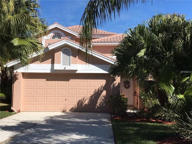 687 Kingsmill Court, Oldsmar, FL 34677 (MLS #U7844205) :: The Lockhart Team
