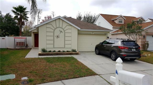 8636 Hawbuck Street, Trinity, FL 34655 (MLS #U7847659) :: Delgado Home Team at Keller Williams