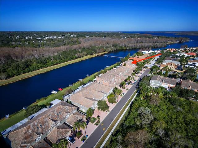 1802 Lago Vista Boulevard, Palm Harbor, FL 34685 (MLS #U7851166) :: Griffin Group