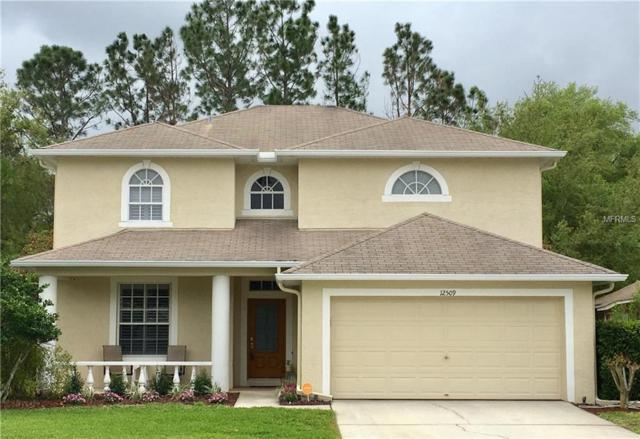 12509 Deerberry Lane, Tampa, FL 33626 (MLS #U7852189) :: Delgado Home Team at Keller Williams
