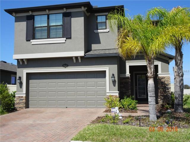 19692 Long Lake Ranch Boulevard, Lutz, FL 33558 (MLS #U7852519) :: Arruda Family Real Estate Team