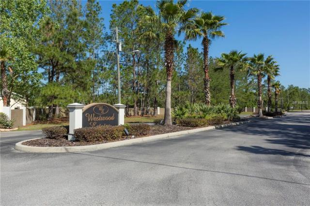 8445 Spring Forest Lane, Wesley Chapel, FL 33544 (MLS #U8000612) :: The Duncan Duo Team