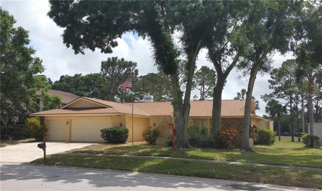 2705 Northridge Drive E, Clearwater, FL 33761 (MLS #U8001612) :: Cartwright Realty