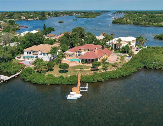 978 Bayshore Drive, Tarpon Springs, FL 34689 (MLS #U8003122) :: Premium Properties Real Estate Services