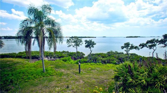 1074 Point Seaside Drive, Crystal Beach, FL 34681 (MLS #U8003353) :: Chenault Group