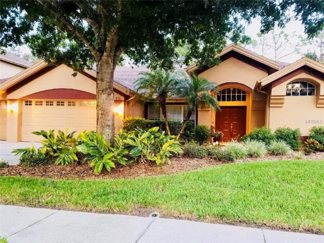 4133 Auston Way, Palm Harbor, FL 34685 (MLS #U8003439) :: Revolution Real Estate