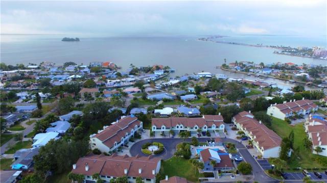 541 Walden Court, Dunedin, FL 34698 (MLS #U8003498) :: Mark and Joni Coulter | Better Homes and Gardens