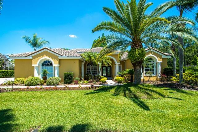 12113 Clear Harbor Drive, Tampa, FL 33626 (MLS #U8003682) :: The Duncan Duo Team