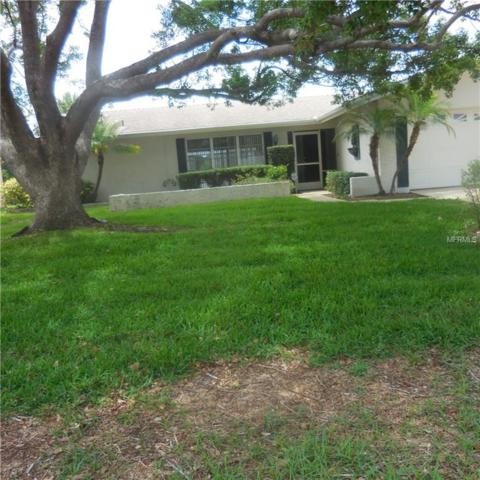 2128 Pine Ridge Drive, Clearwater, FL 33763 (MLS #U8004546) :: The Lockhart Team