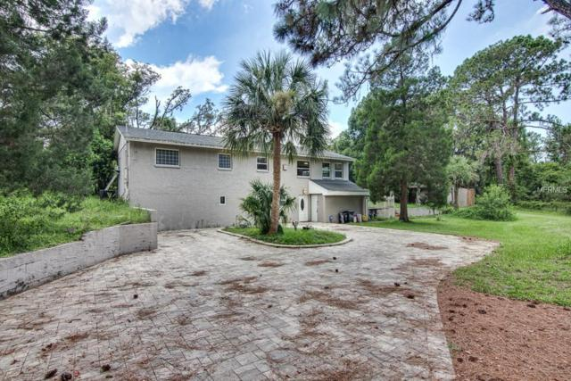9425 Osceola Drive, New Port Richey, FL 34654 (MLS #U8006570) :: Griffin Group