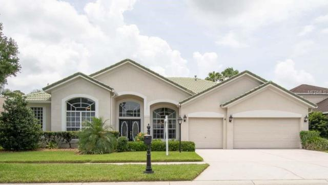 11818 Middlebury Drive, Tampa, FL 33626 (MLS #U8006689) :: The Duncan Duo Team