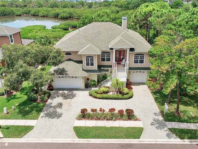 236 Sanctuary Drive, Crystal Beach, FL 34681 (MLS #U8006873) :: Beach Island Group