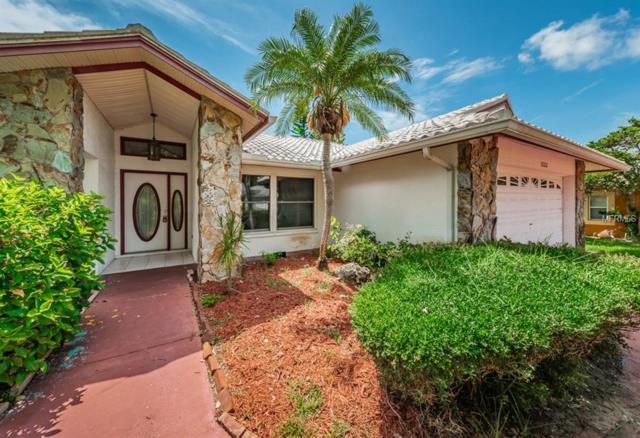 1333 Hillside Drive, Tarpon Springs, FL 34689 (MLS #U8009137) :: RE/MAX CHAMPIONS