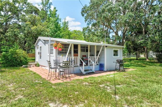 3233 Baldwin Street, Spring Hill, FL 34606 (MLS #U8009220) :: Jeff Borham & Associates at Keller Williams Realty
