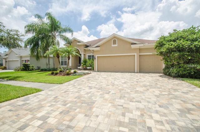10335 Millport Drive, Tampa, FL 33626 (MLS #U8010059) :: The Duncan Duo Team