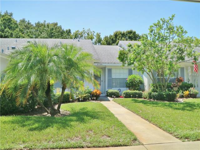 2729 Featherstone Drive, Holiday, FL 34691 (MLS #U8011298) :: Griffin Group