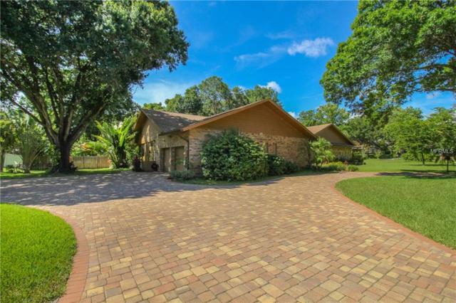 3042 Harvest Moon Drive, Palm Harbor, FL 34683 (MLS #U8011688) :: Jeff Borham & Associates at Keller Williams Realty