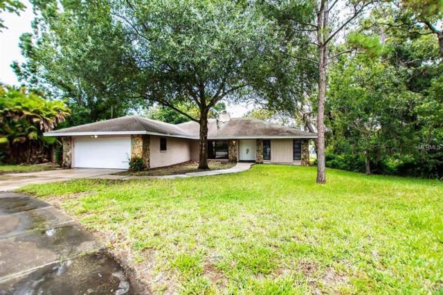 840 Hickory Lane, Palm Harbor, FL 34683 (MLS #U8011717) :: Jeff Borham & Associates at Keller Williams Realty