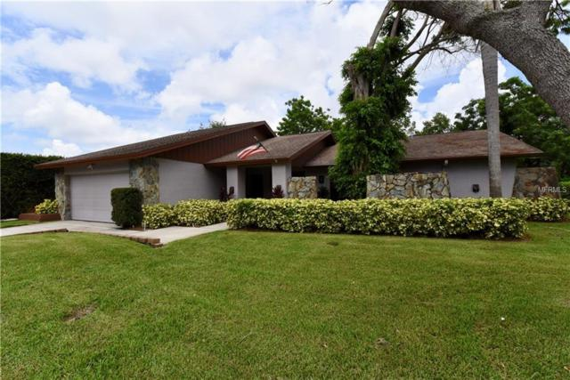 1177 Eniswood Parkway, Palm Harbor, FL 34683 (MLS #U8012439) :: The Light Team