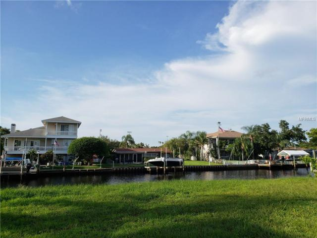 Manatee Lane, Tarpon Springs, FL 34689 (MLS #U8012577) :: RE/MAX Realtec Group