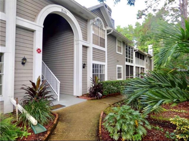 2101 Fox Chase Boulevard #101, Palm Harbor, FL 34683 (MLS #U8012903) :: KELLER WILLIAMS CLASSIC VI