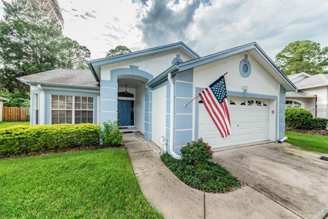 10412 Springrose Drive, Tampa, FL 33626 (MLS #U8014118) :: The Duncan Duo Team
