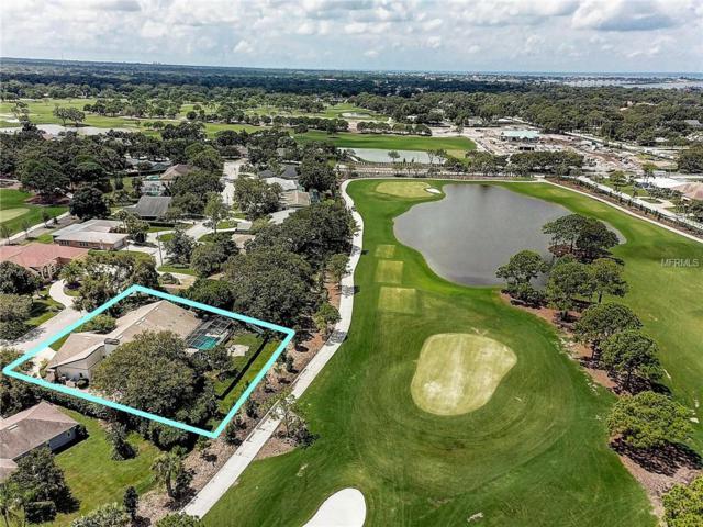 14 Hibiscus Road, Belleair, FL 33756 (MLS #U8016014) :: Burwell Real Estate