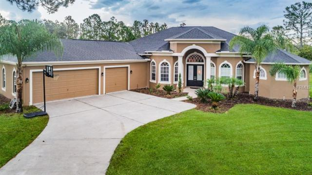 8118 Spring Forest Lane, Wesley Chapel, FL 33544 (MLS #U8016498) :: The Duncan Duo Team