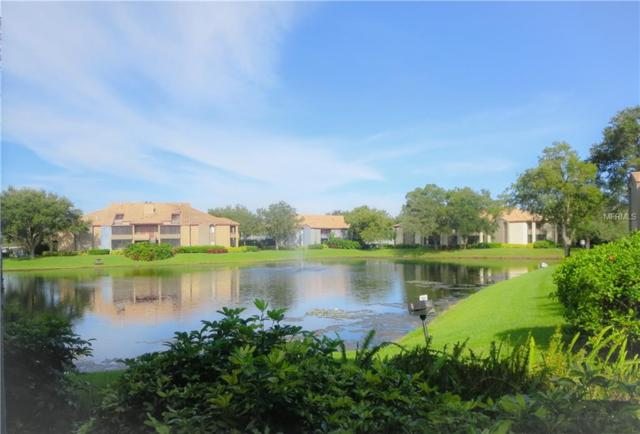 10265 Gandy Boulevard N #1607, St Petersburg, FL 33702 (MLS #U8017176) :: RealTeam Realty