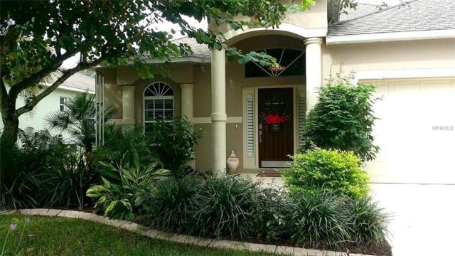 4823 Gardens Run, Ellenton, FL 34222 (MLS #U8017405) :: Lovitch Realty Group, LLC