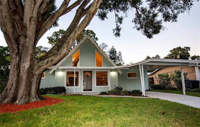 800 Saint Catherine Drive N, Dunedin, FL 34698 (MLS #U8018106) :: Burwell Real Estate