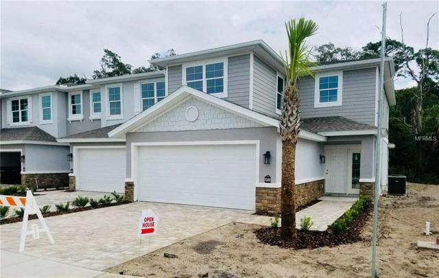 5284 Riverwalk Preserve Drive, New Port Richey, FL 34653 (MLS #U8020086) :: Lock and Key Team